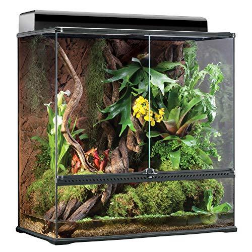 Exo Terra Terrarium aus Glas, mit einzigartiger Front Belüftung, 90 x 45 x 90cm, auch als Paludarium nutzbar